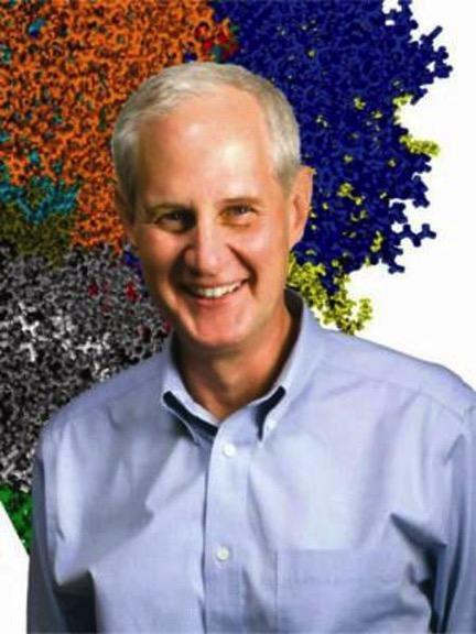 Faculty & Research | Center for Bioenergy & Photosynthesis
